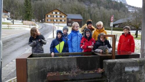 Pfadfindergruppe Bregenz - Wölflinge